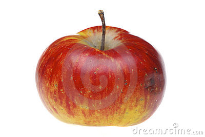 Red wet apple