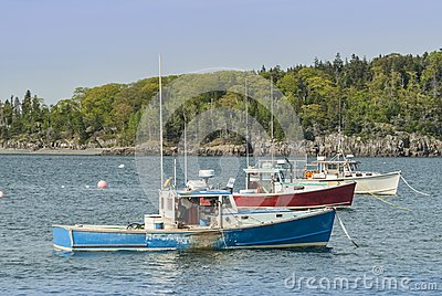 Red White Blue Lobster Boats at Bar Harbor Maine