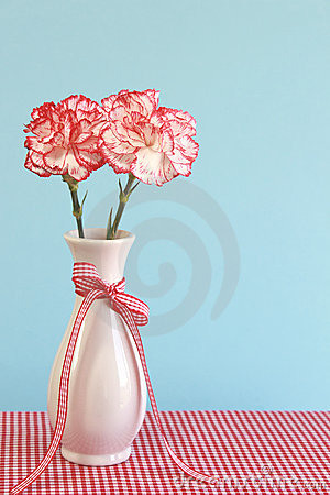 Red and White Carnations in a Vase