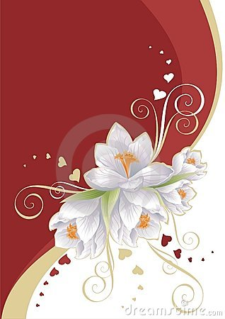 Red and white with flowers