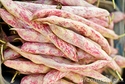 Red and White Mottled Green Beans