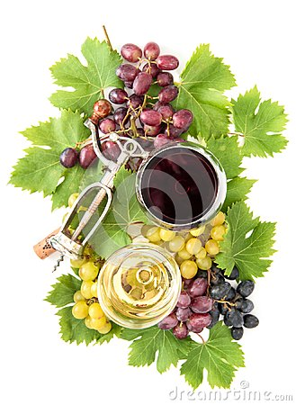 Free Red White Wine Glasses Grape Vine Green Leaves Autumn Stock Photography - 99848402