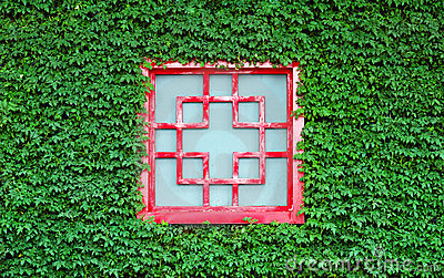 Red window in green leaves
