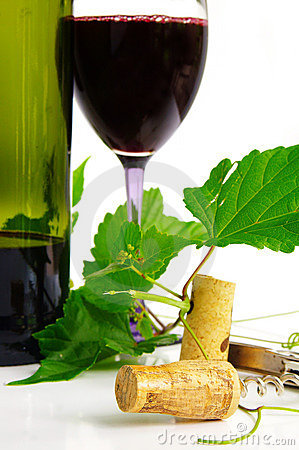 Free Red Wine Stock Photography - 2016512
