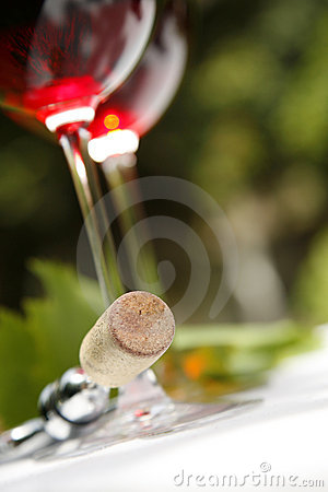Free Red Wine Royalty Free Stock Images - 2791079