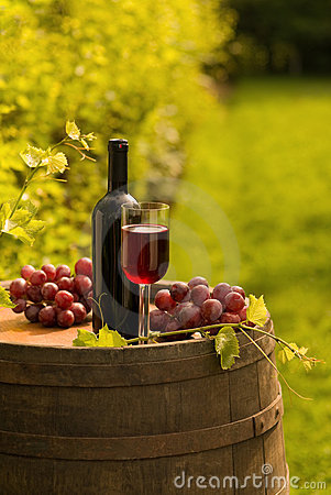Red wine bottle, wineglass and grapes in vineyard