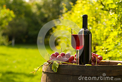 Red wine bottle with wineglass and grapes in vineyard