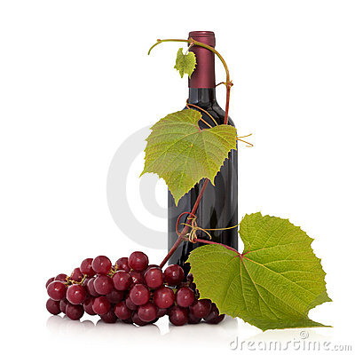 Red Wine and Grape Vine