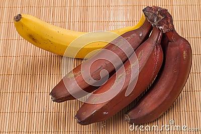 Red and yellow bananas
