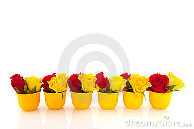 Red and yellow roses in yellow egg cups