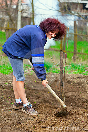 Free Redhead Young Lady Digging In The Garden Stock Image - 19287191