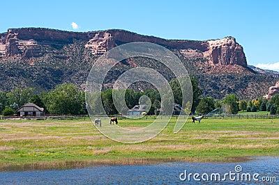 Redlands, Grand Junction