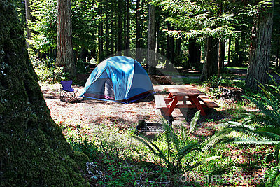 Redwood Tent Camping