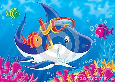 Reef 05