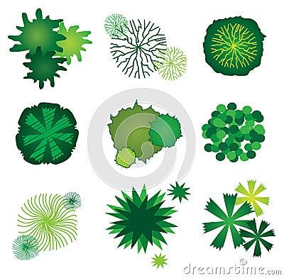 Reeks pictogrammen van de boom voor het ontwerp van het plan van de tuin stock afbeeldingen - Boom ontwerp ...