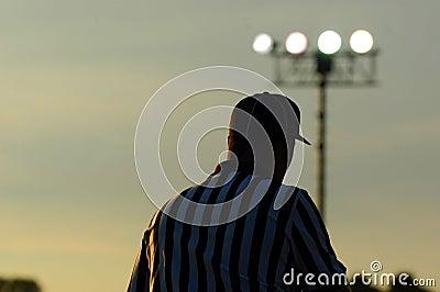 Referee 3