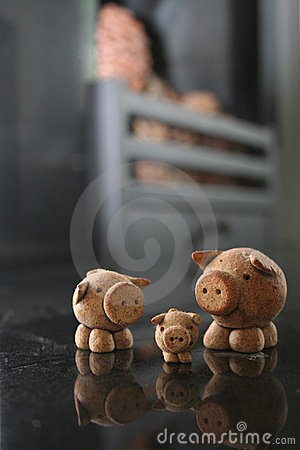 Reflecting Pigs