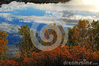 Reflection Royalty Free Stock Image - Image: 14057886