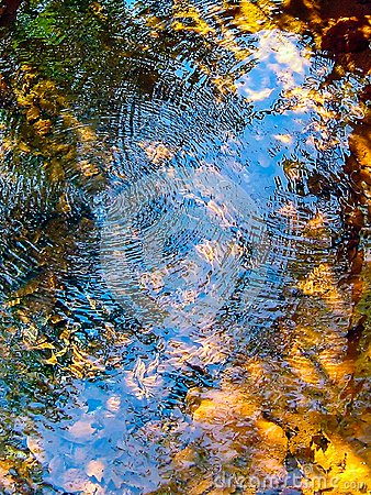 Free Reflection And Circle Waves Stock Photo - 103360230