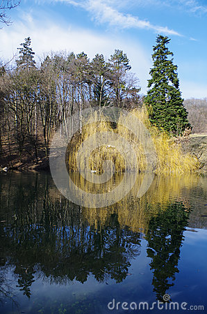 Free Reflection In The Lake Royalty Free Stock Images - 51250989