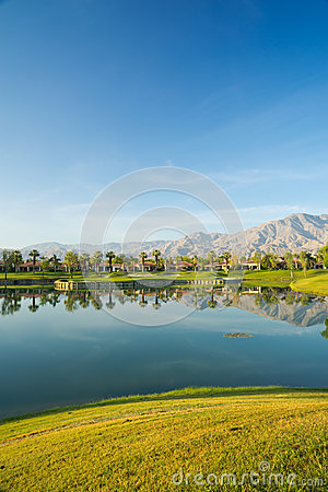 Reflection of Mountains and Palm Trees