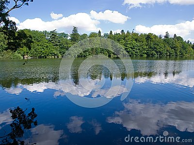 Reflection of trees and clouds in a lake