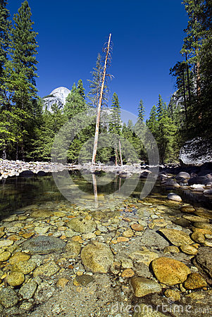 Reflections in Merced river, Yosemite National Park,California, USA