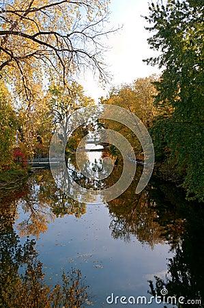 Free Reflections Of Autumn At Botanical Garden Royalty Free Stock Photo - 49635885