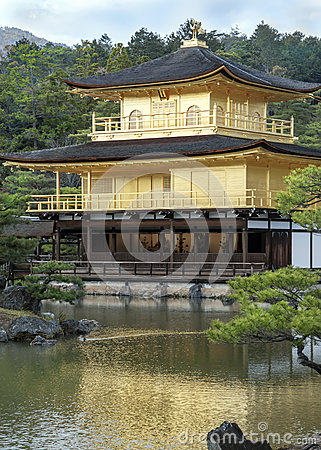 Free Reflections Of Gold Stock Photo - 53849850
