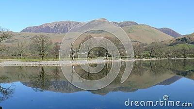 Reflective symmetry in a lake