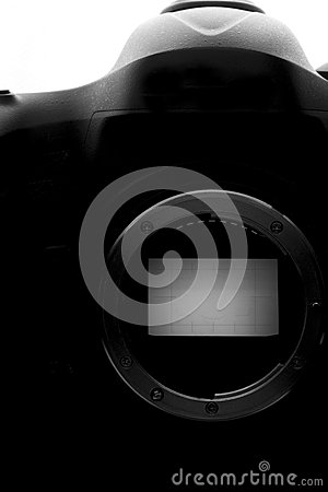 Reflex Camera isolated on white. Professional DSLR silhouette.