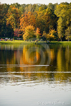 Reflexion of the autumn
