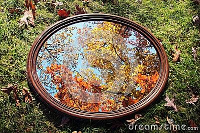 Reflexão do outono