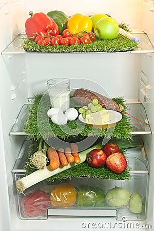 Refrigerator An Food