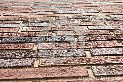 Regarder des briques
