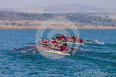 Regatta Eights Oct Rowing Racing Editorial Stock Photo