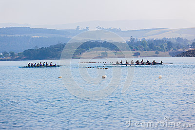 Regatta Eights Octs Rowing Teams Start Editorial Stock Image