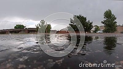 Regen op het wegdek stock footage