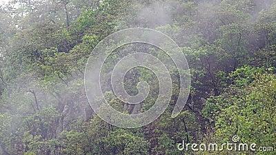 Regenachtige wolk op de heuvel stock footage