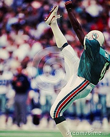 Free Reggie Roby, Miami Dolphins Royalty Free Stock Image - 44437636