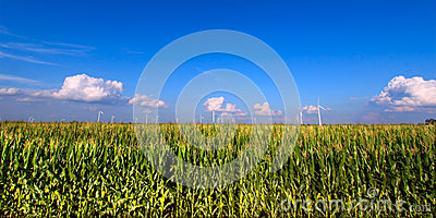 Región agrícola de Illinois