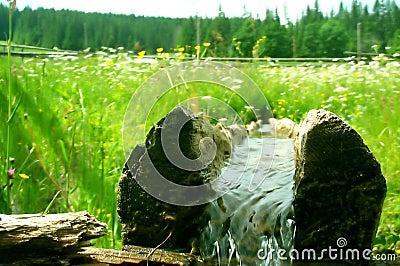 Registro com água fresca