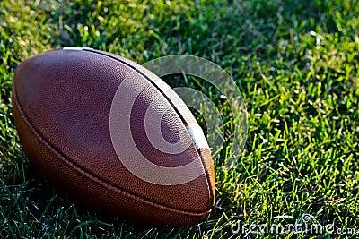 A Regulation Football on a Natural Grass Field