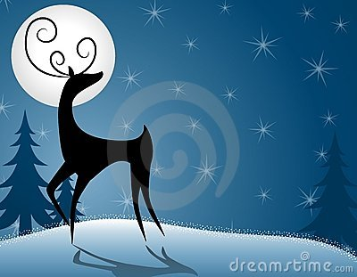 Reindeer or Deer Standing In Moonlight