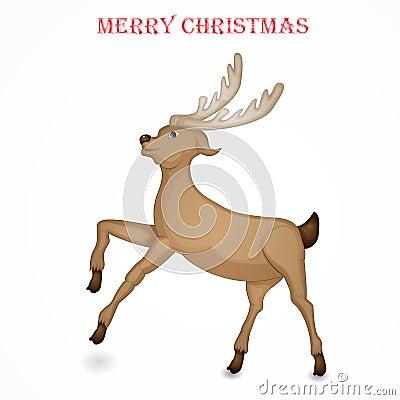 Reindeer isolated for Christmas Stock Photo