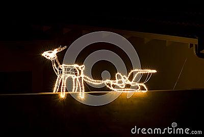 Reindeer Lights