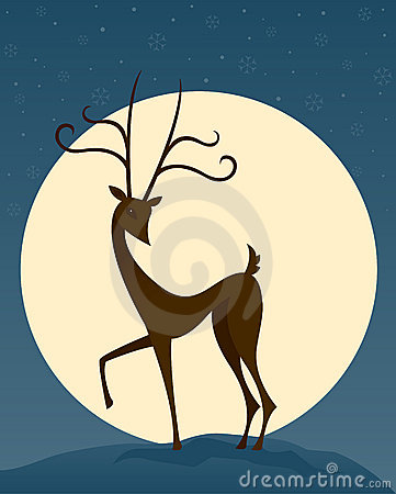 Reindeer at Night