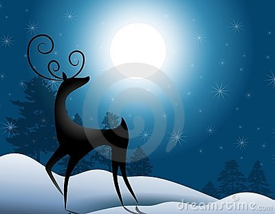 Reindeer Standing In Moonlight
