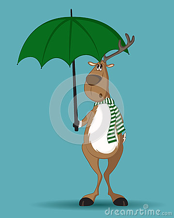 Reindeer standing under umbrella