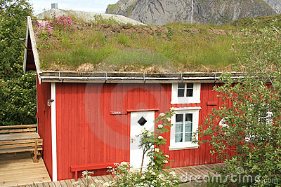 Reine s lodge with grass on the roof